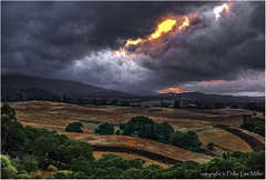 And the wind cries Mary (philipleemiller) Tags: california sunset nature grass landscape woodside legacy hdr rollinghills stormclouds hypothetical sanmateocounty windingroads d7000 californiaoaktrees topazdetail galleryoffantasticshots trueexcellence1