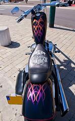 HARLEY DAVIDSON (steve lorillere) Tags: woman girl festival mulher harleydavidson moto motorcycle frau menina mädchen 女孩 motocicleta motorrad sainttropez 摩托车 女人 мотоцикл 节日 фестиваль женщина девушка 哈雷戴维森 сентропе 圣特罗佩 سانتروبيه،مهرجان،هارليديفيدسون،دراجةنارية،فتاة،امرأة