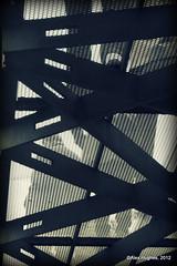 Kew - Walkway (Rednaxela13) Tags: people bw kewgardens monochrome kew canon eos mono objects manmade tamron botanicalgardens royalbotanicalgardens alexhughes 60d canoneos60d tamron70300mmvc ©alexhughes alexanderhughes