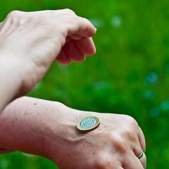 Head or tail (glukorizon) Tags: money bird animal coin hand euro greece owl dier vogel geld munt odc griekenland uil useyourhead headortail odc2 ourdailychallenge kopofmunt