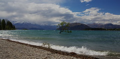 Lake Wanaka (mthomson34) Tags: