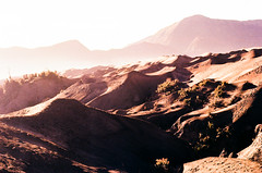 the terrain (notalux) Tags: film vintage indonesia lomography nikon mount tungsten f3 analogue bromo