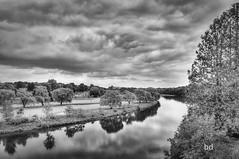 From Rare's Grand River Lookout (barbdpics) Tags: hiking thegreatoutdoors cambridgeontario nikond300s grandrivercambridge ourdailychallenge barbdpics