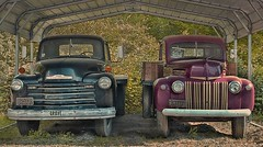 CHEVY VS. FORD (NC Cigany) Tags: sign nc forsale farm pickup lorry trucks antiques 1950 1943 bakersville 1950chevy farmtrucks mitchellcounty 1943ford