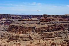 Grand Canyon National Park (lisabeephotos) Tags: arizona sky bird nature birds clouds landscape nationalpark natural earth grandcanyon az canyon grandcanyonnationalpark westrim guanopoint photocontesttnc12