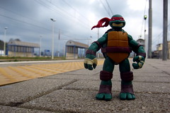 Leaving Calabria (Rafael Pealoza) Tags: italien italy train italia trainstation 365 raphael calabria tmnt rosarno oneobject365daysproject 365toyproject 365daysofraphael