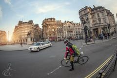 Trafalgar Square (www.javierayala-photography.com) Tags: uk inglaterra sunset england london trafalgar trafalgarsquare fisheye londres