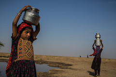 Dhaneta Jat tribe girls carrying water containers on the head in great rann of kutch (anthony pappone photography) Tags: travel girls india colors silver colours handmade muslim earring piercing ring rings tribes asie nosering cloth ethnic indi indien nomads indi yat islamic gujarat inde ethnology azi nomadic indland noserings kutch bhuj  jat etnic greatrannofkutch indija  etnia handembroidered ethnie carryingwater womancarrying dhanetajat dhaneta   jattpeople jatttribe earringnose earringjatjat jattribe desertkutch kutchtribes anthropologye dhanetajattribe ahirtribe