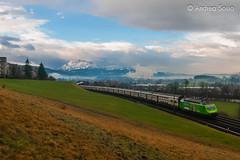 Re.460.080 'Tre Valli' SBB (Andrea Sosio) Tags: train ir schweiz sbb treno ffs abb cff re460 slm 080 schweizerischebundesbahnen honau 2631 nikond60 interregio kantonluzern gisikon andreasosio