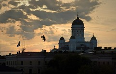 Birds of heaven (KaarinaT) Tags: sunset sky church birds clouds helsinki cathedral dusk suurkirkko helsinkicathedral