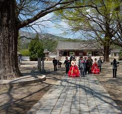 Mariage - Seonggyungwan - Kaesong (jonathanung@ymail.com) Tags: wedding lumix asia korea unesco asie mariage kp nord northkorea corée dprk cm1 koryo coréedunord insidenorthkorea républiquepopulairedémocratiquedecorée rpdc seonggyungwan kaesŏng northhwanghae lumixcm1