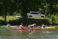 Boys Babes Beer and Bow-Wows on the Bayou 34 (Omunene) Tags: shirtless dog puppy kayak neworleans bayou bayoustjohn