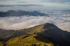 -13 (billlushana1) Tags: travel cloud mountain flower tree sony taiwan hike peaks  taroko tw  tarokonationalpark hehuanshan    mountain 100peaksoftaiwan taiwantop100peaks sonya7r