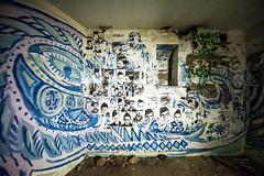 Born Free (Thomas Hawk) Tags: california usa abandoned america graffiti unitedstates military marin unitedstatesofamerica battery marincounty marinheadlands mendel northbay fav10 militarydecay batterymendel