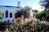 2 Bedroom Estate Villa - Paros #4