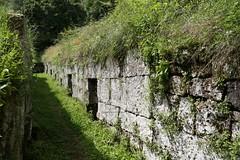 Necropoli di Orvieto_25