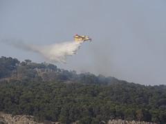 Ancora in azione (RoBeRtO!!!) Tags: mountain airplane fire pines sicily monte palermo aereo fuoco canadair pini montepellegrino rdpic sonyhx400v