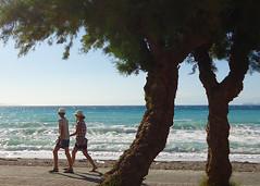 Together (Argyro...) Tags: sea people tree beach seaside corinth greece  kalamiabeach