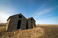 Shedding. (Explore) (Fistfulofpowder) Tags: door wood windows sky canada abandoned field grass clouds angle wide shed tokina forgotten alberta stmichael prairies desolate sheds rangeroad 1116mm tokina1116mm nikond300s