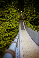 Capilano Suspension Bridge (A Great Capture) Tags: trip travel bridge trees vacation vancouver bc suspension getaway north columbia british capilano westcoast ald ash2276 ashleyduffus vancouver2010b ashleylduffus wwwashleysphotoscom