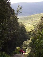 Vale of Belvoir (Rotuli) Tags: australia tasmania valeofbelvoir alpinegrassland tasmanianlandconservancy