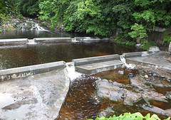 Finished (rowanlea51) Tags: scotland fishing salmon conservation kilmarnock ayrshire blackrocks kilmarnockwater