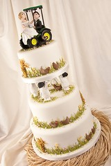 Wedding Cake for a farming couple .... (abbietabbie) Tags: flowers wedding tractor chicken grass cake groom bride corn sheep farm fimo hay pillars johndeere blackfaced