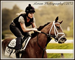 Mike Maker Trainee (EASY GOER) Tags: horses ny sports racetrack canon tracks competition racing 7d athletes races equine thoroughbreds equines