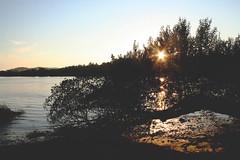 :) (Helena Barker) Tags: sunset sun tree sol rio river arbol branch playa arena mio rama anochecer