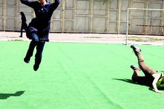 172 (Maryam J S) Tags: girls green grass football jump jumping happiness