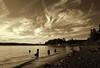 Shore at the Narrows [Explore] (tacoma290) Tags: sky beach sepia clouds nikon shoreline pugetsound tacoma narrows narrowsbridge titlowbeach titlow interestingness459 shoreatthenarrows explore13jun12