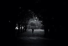 Alone (Xabier Alonso) Tags: santiago blackandwhite bw blackwhite nikon galicia voyeur santiagodecompostela lowkey voyeurshot d3000 nikond3000