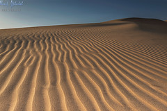 Alsalmi Sand Dunes! - Kuwait (AlkhashabNawaf) Tags: light sand nikon shadows desert dunes kuwait nikkor  d800 1635        alsalmi