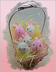 A Basket Of Easter Bunnies (Jo- Brilliant Sun and Mid 60's Today!) Tags: pink white happyeastereveryone sliderssunday abasketofbunnies