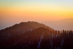 H y p n o t i c (_Amritash_) Tags: travel sunset landscapes himalayas hypnotic sunsetsky sunsetpoint snowcappedmountains sunsetcolors sunsetlights  jalori himalayanmeadows travelinindianhimalayas