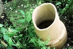 Broken Pot (cyanidissium) Tags: old trees plants broken forest weeds woods stones pots settlement