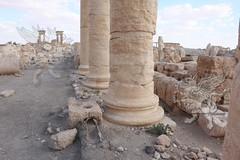 Acquedotto_Palmira_(Siria)_002