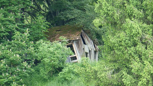 Alte Hütte zwischen Forggensee und Enzensberg