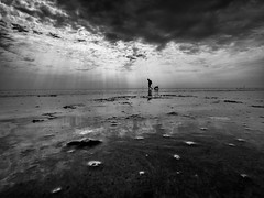 Walking The Dog (Dan-Schneider) Tags: blackandwhite bw beach best camera clouds schwarzweiss scene silhouette mirror sea olympus omdem10 monochrome decisive moment mft minimalism dan schneider silence sky sun light shadow