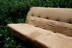 external room (mel-pin) Tags: sunlight grass out outside room may natura sofa there melpin