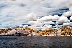 IR Imagery -Nimbus Flat / Lake Natoma California State Park (etgeek (Eric)) Tags: ir infrared californiastatepark lakenatoma nikond90 nimbusflat n6oim fullspectrummodified ircutofffilter 689nm