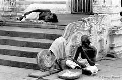 Kanchipuram - Tamil Nadu - Inde 1989 (thierrymasson94) Tags: india temple tamilnadu inde noirblanc kanchipuram