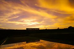 (tenugui) Tags: railroad sunset sky cloud japan train twilight pentax railway trains ricefield yamanashi    jr diesellocomotive  kobuchizawa  koumiline   smcpda1224mmf40edalif 110