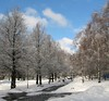 IMG_6587_Sananl_31_21_800 (Heikki Damski) Tags: snow espoo suomi finland outdoor lumi talvi wow1 wow2 wow3 wow4 wow5