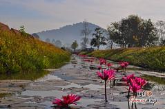 Landscape - Khmer Cruiser.jpg