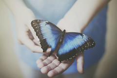 Never Let Me Go (Shelby Robinson) Tags: blue boy portrait canon rebel 50mm hand little finger butterly f18 t1i