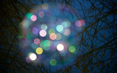 Colours of Light (Maggie's Camera) Tags: pink blue light orange white black colour green purple bokeh circles avatar donuts coloured