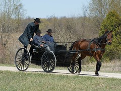 2012-04-22_Hitching a Ride (Mark Burr) Tags: holyrood mennonite horseandbuggy brucecounty oldordermennonite