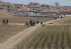 Village (from train) (mulderlis) Tags: northkorea pyongyang dprk noordkorea