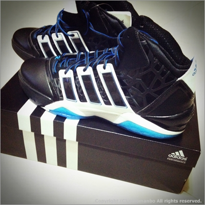 adiPower Howard 2 籃球鞋